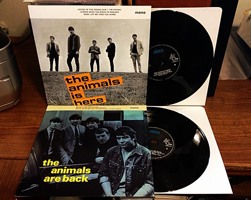 "Record Store Day Haul #9: The Animals - Is Here 10"" / Are Back 10"" by Tim PopKid"