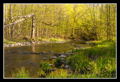 Spring Comes to Charlton by UpstateNYPhototaker