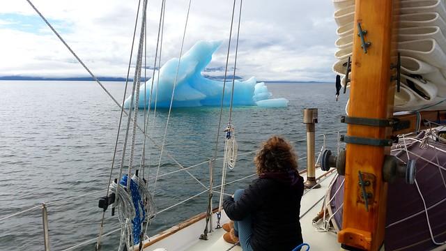 Watching the Ice Stephens Passage