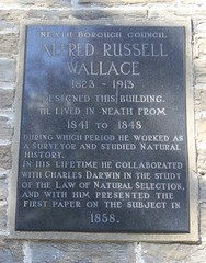 Photo of Alfred Russel Wallace black plaque