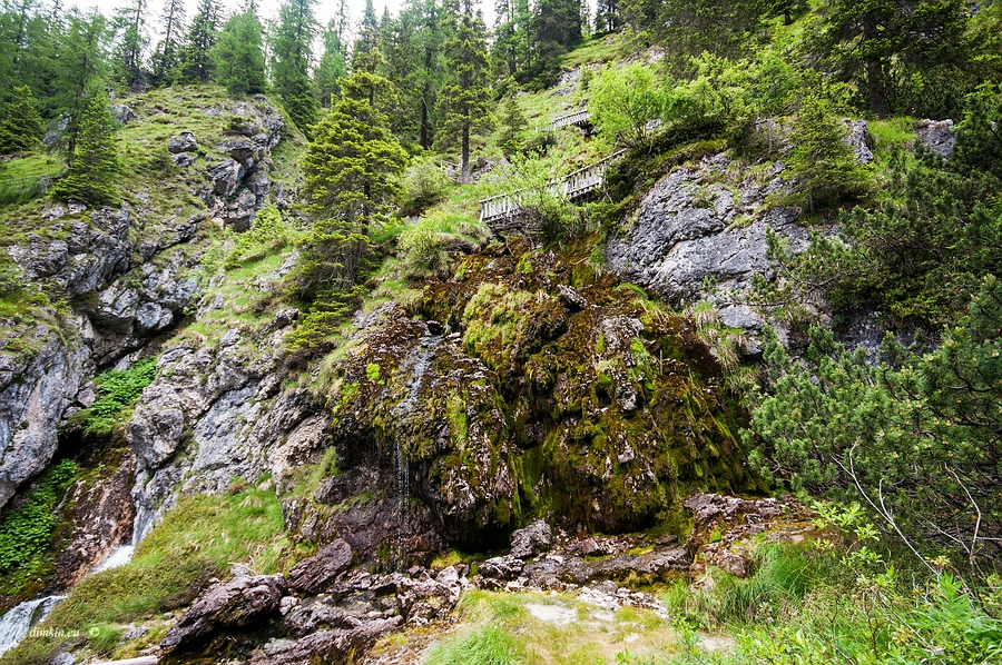 Ragoli, Trentino, Trentino-Alto Adige, Italy, 0.006 sec (1/160), f/8.0, 2016:06:30 11:26:27+00:00, 12 mm, 10.0-20.0 mm f/4.0-5.6
