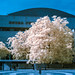 Infrared Royal Festival Hall reworked