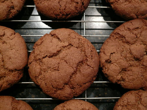 Ginger biscuits, close