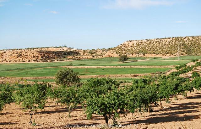 Lo Truyols, Murcia
