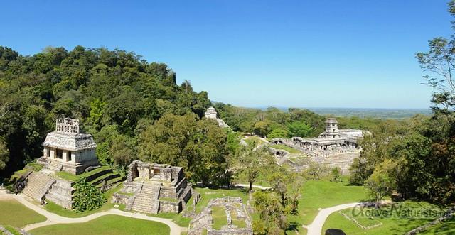 naturist 0024 Palenque, Chiapas, Mexico