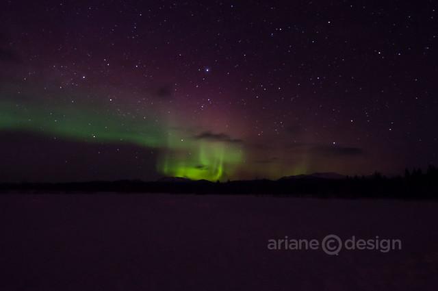 Yukon Aurora Borealis 4_7_2013-5