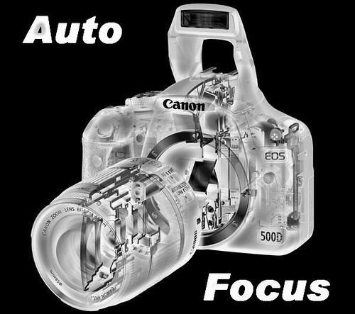 Auto Focus Level 7