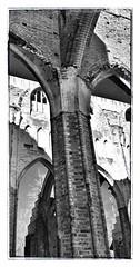 Tartu Cathedral ruins