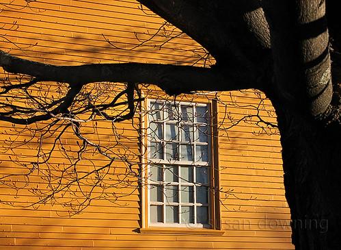 The Window 231/365