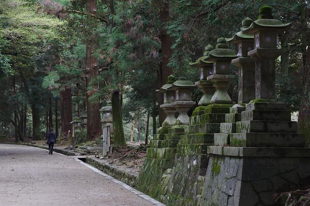 1069 - Nara