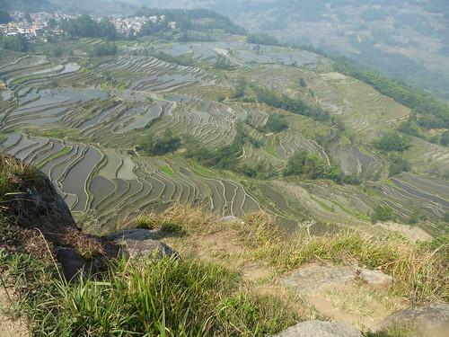 Yunnan13-Yuanyang 8 (6)