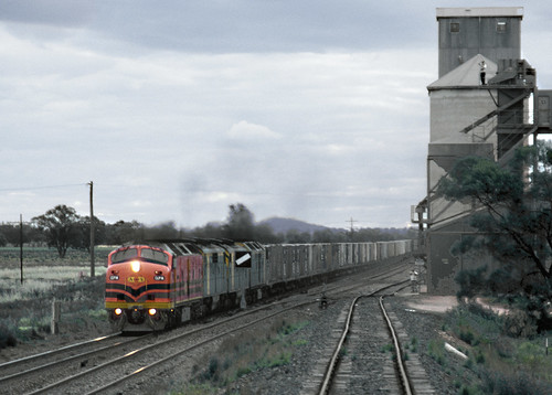 CLP14, GM37, GM38 and CLF2 approaching Yarranbandai, 30th October, 2000.