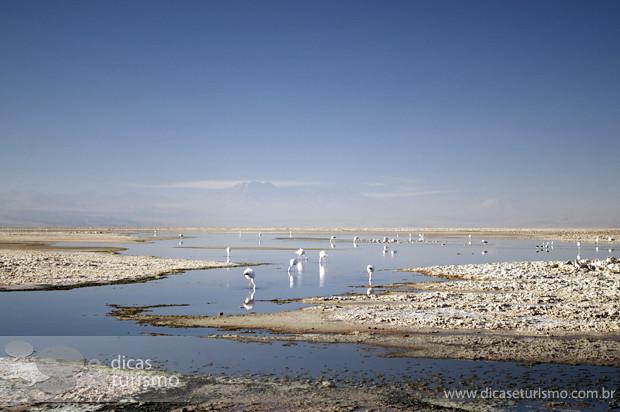 Lagunas Altiplanicas - Atacama 2