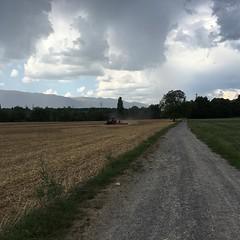Promenade #tracteur #champ #été #promenade @genevatourism