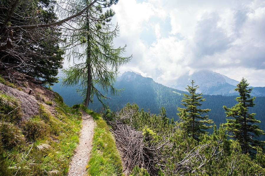 Ragoli, Trentino, Trentino-Alto Adige, Italy, 0.003 sec (1/400), f/8.0, 2016:06:30 10:17:10+00:00, 10 mm, 10.0-20.0 mm f/4.0-5.6