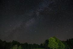 Chantilly Farm 2 Milky Way