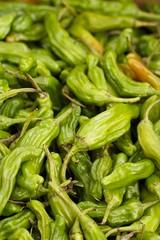 choy sum(0.0), plant(0.0), snap pea(0.0), fiddlehead fern(0.0), vegetable(1.0), bird's eye chili(1.0), produce(1.0), food(1.0),