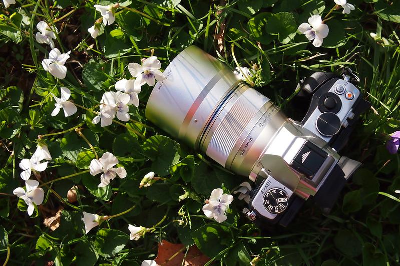 75mm f/1.8|OLYMPUS OM-D