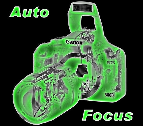 Auto Focus Level 6