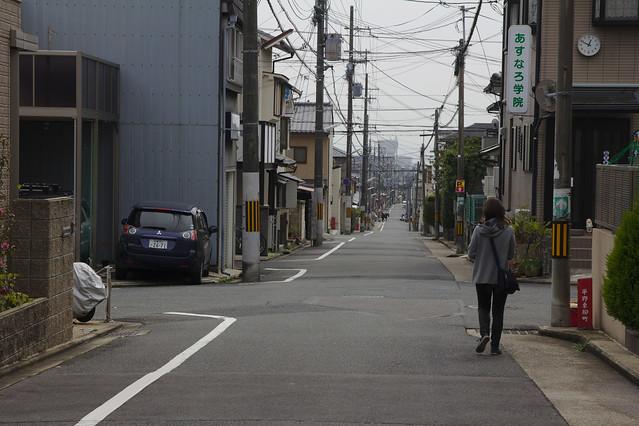 0772 - Camino de Ryoan-ji