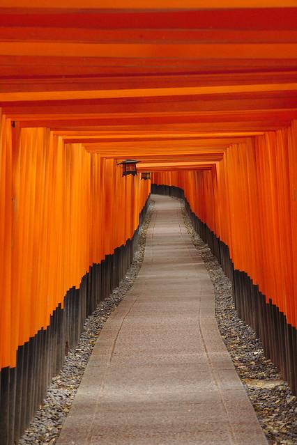 1004 - Fushimi Inari Taisha Shrine