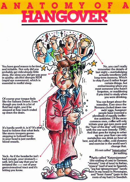 anatomy-of-a-hangover