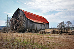 barns, sheds and shacks