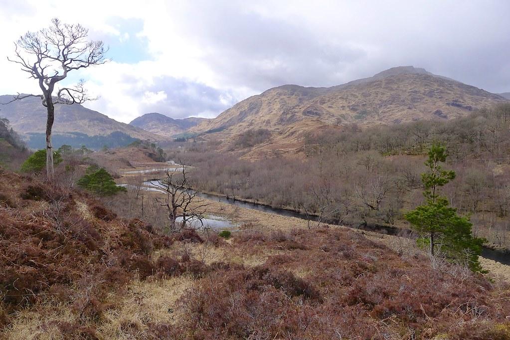 River Callop