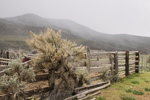storm fence landscape utah rustic idaho woodruff sagebrush snowflurries oneidacounty d5100 anitaburke montecristocanyon montecristoscenicdrive montecristohighway