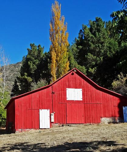 california autumn fallleaves usa fall apple barn landscapes farm redbarn appleorchard inlandempire turningleaves oakglenca snowlineorchard fallonthefarm dgrahamphoto