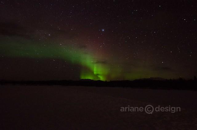 Yukon Aurora Borealis 4_7_2013-9