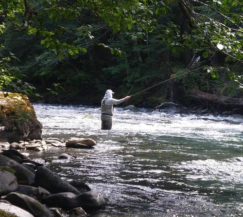 Waters west newsletter for Sol duc river fishing