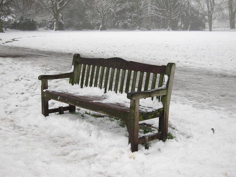 Peckham Rye: bench