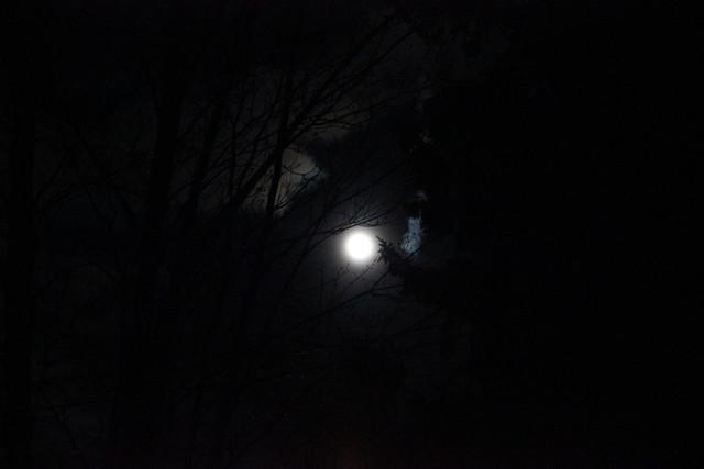 pink moon no. 6