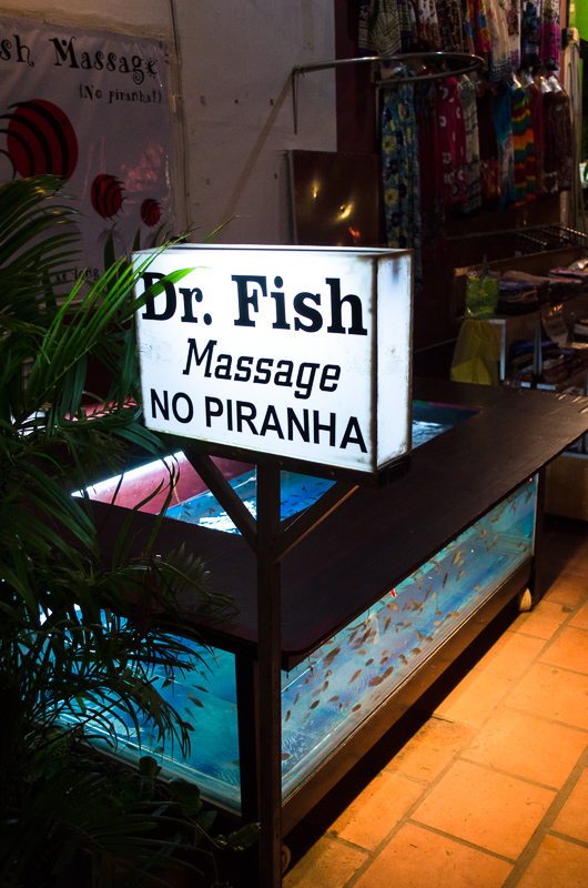 Fish Massage - Siem Reap
