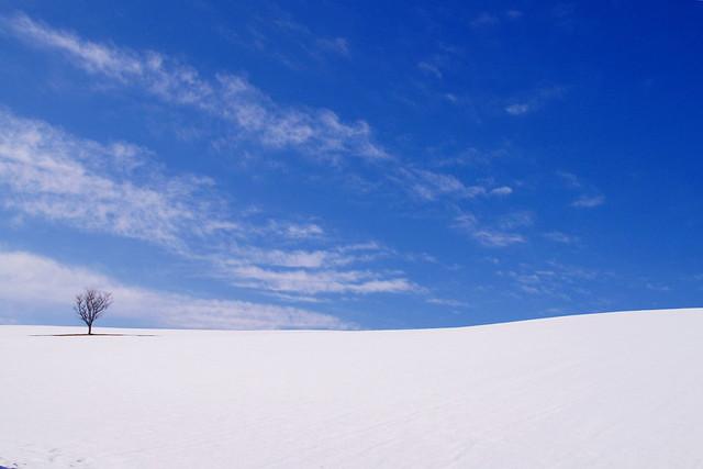 冬のおわり 3