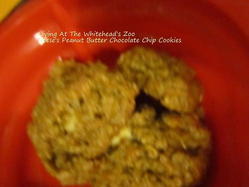 reesespbchipcookie