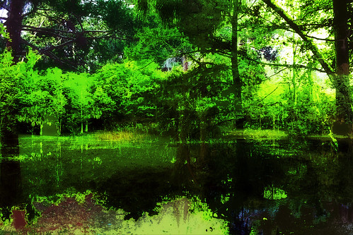 trees abstract photomanipulation pond digitalart meadgardens arteffects greenscene awardtree
