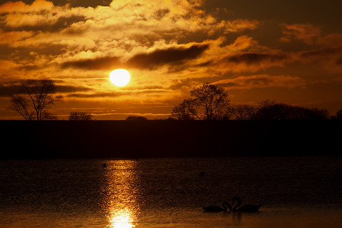 panorama water birds sunrise goldenglow sunrse yeadonleeds markwinterbournephotographycanoneosbradfordwestyorkshireunitedkingdomleedsyeadon markwinterbournephotographycanoneosbradfordwestyorkshire tarndam