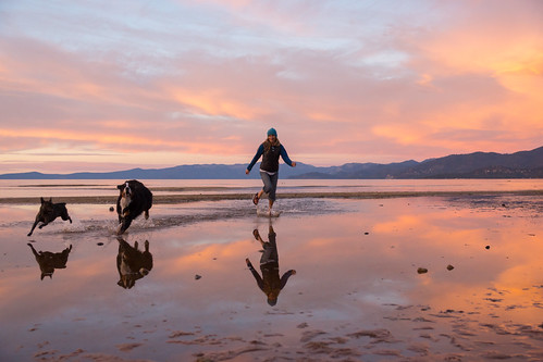 california sunset red lake reflection dogs girl yellow evening unitedstates tahoe southlaketahoe