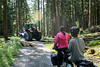 Waiting for the foresters to clear the path in Bavarian forest on Via Claudia Augusta