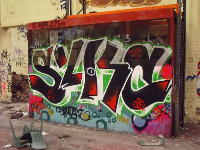 DSCF4204