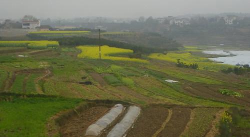Hunan13-Zhangjiajie-Fenghuang-Bus (4)