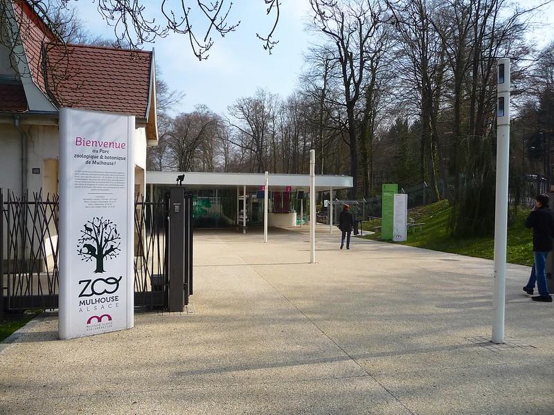 Besuch im Mulhouse Zoo - knutisweekly.com