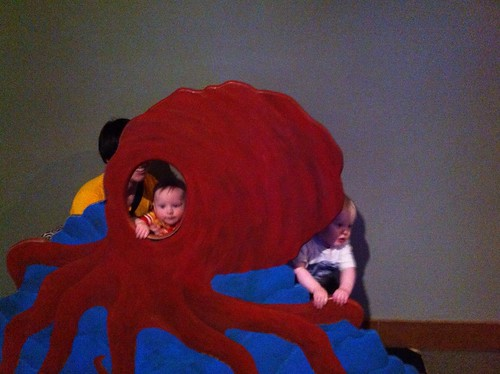 Too Fast for the Octopus