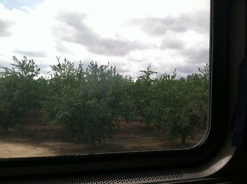 Orchard from Amtrak