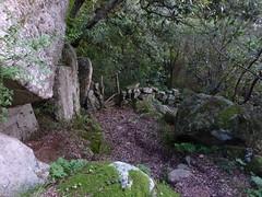 Chemin de Sant'Agostinu : descente le long des murets