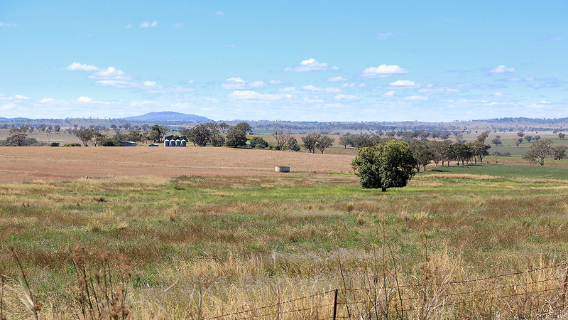 Farm country between Wellington and Mudgee