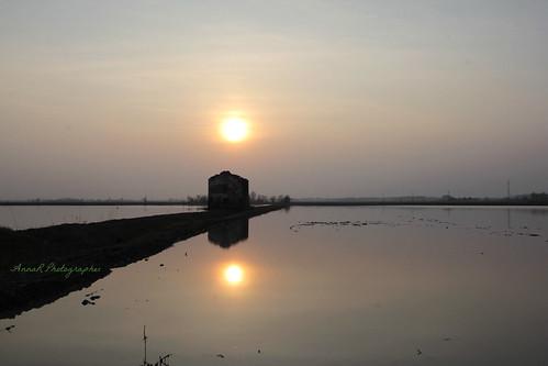 sun water sunrise tramonto rise sole acqua due riso cascina risaia castellazzonovarese