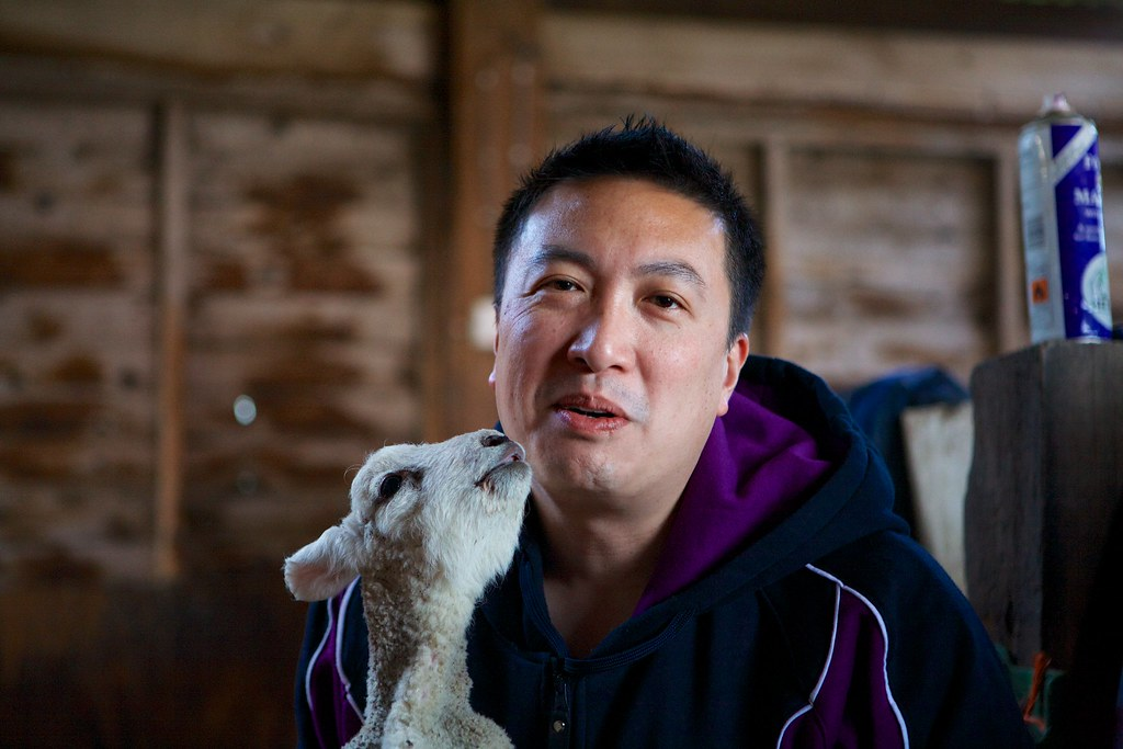 One man and his lamb